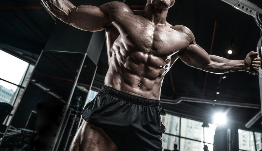 Best recommended supplements for you. The healthy way to gaining muscles