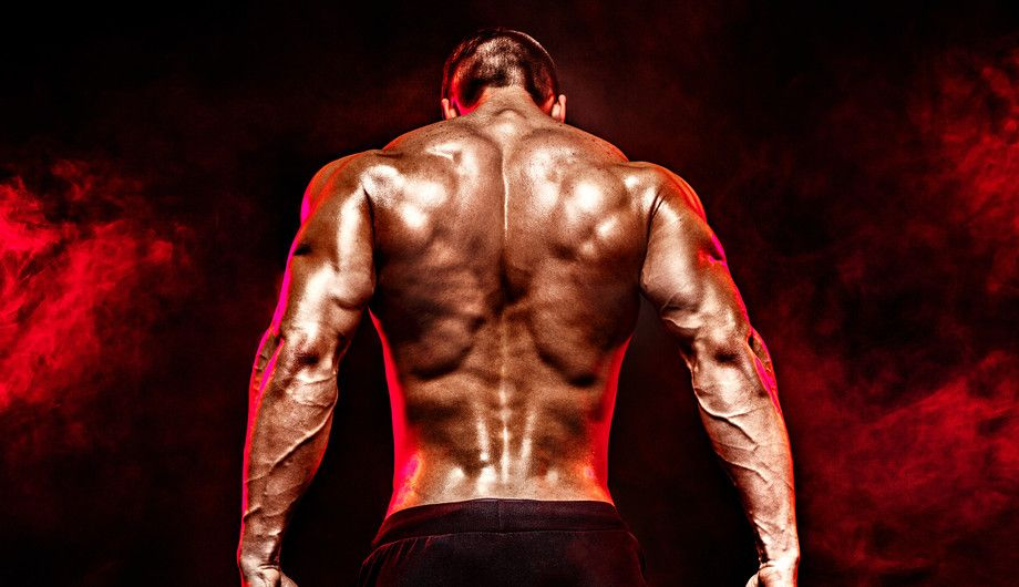 Want to Step Up Your Lats Workout at Home – Read these Tips from the Experts First